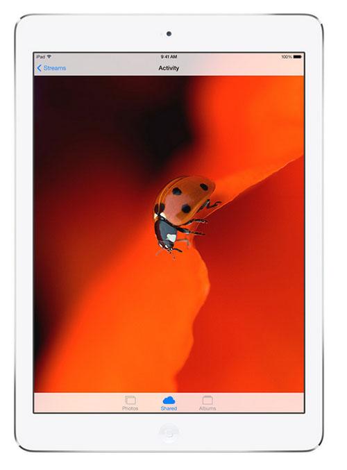 iPad Air_4