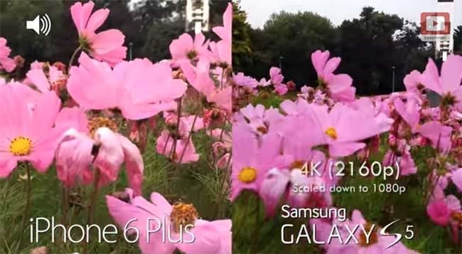 iphone 6 plus vs s5_1